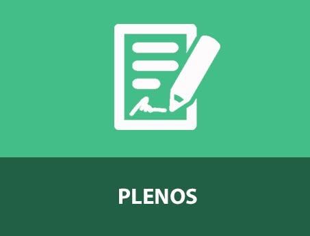 PLENOS